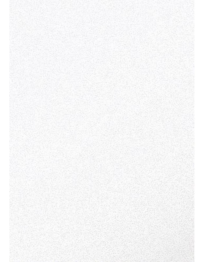 A4 Pollen paper 120g 50 sheets pearl white