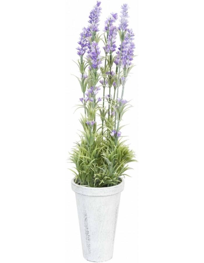 deko lavendel im topf 10x50 cm clayre eef fotoalben. Black Bedroom Furniture Sets. Home Design Ideas