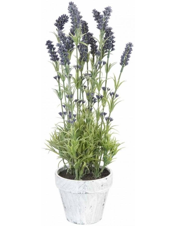 Deko Lavendel Im Topf O 15x48 Cm Clayre Eef Fotoalben Discount De