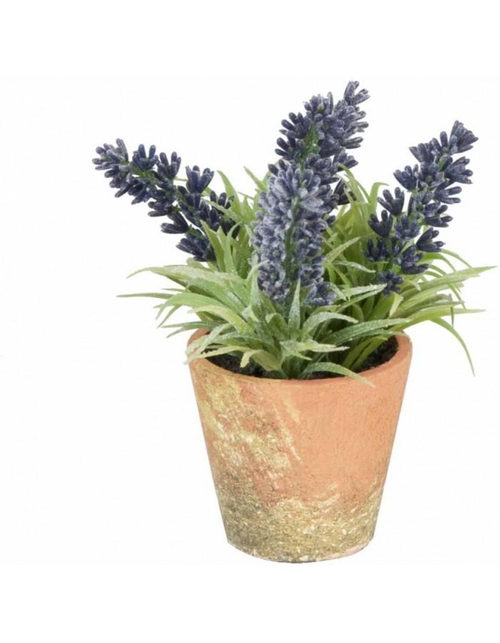 Deko Lavendel Im Topf O 7x15 Cm Clayre Eef Fotoalben Discount De