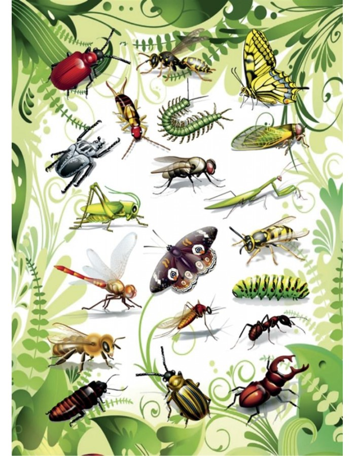 HERMA Sticker MAGIC insects, 2D foil
