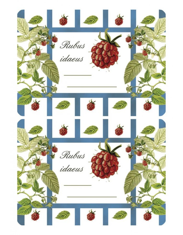 Adhesive canning labels Raspberry - 3 sheets