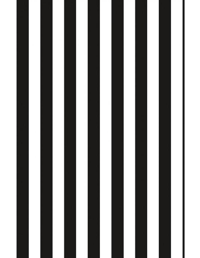 Papier 70x100 cm Streifen schwarz weiß ARTEBENE | fotoalben-discount.de
