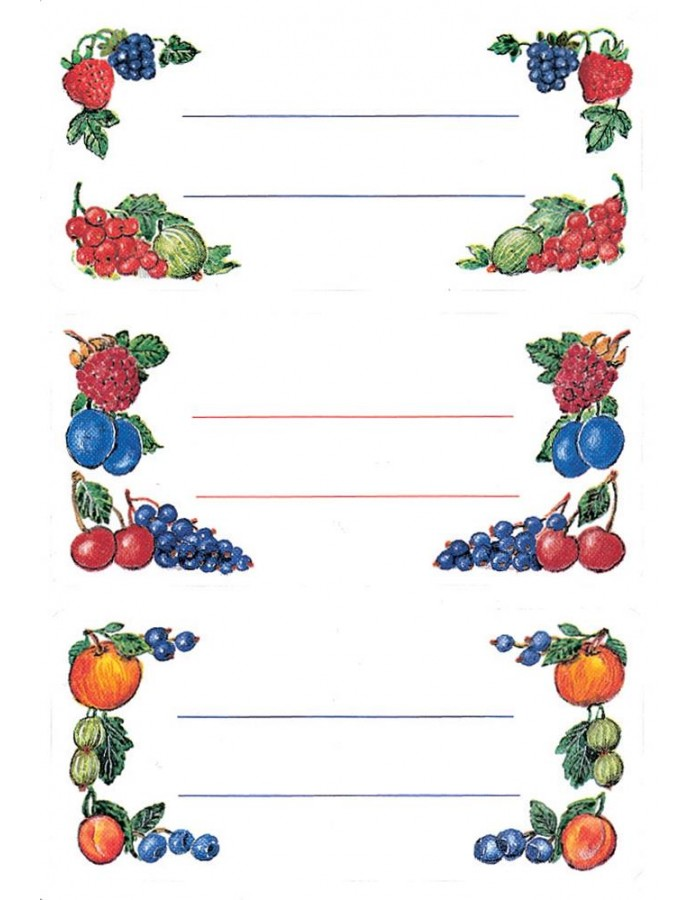 Colourful adhesive canning labels Fruit - 4 sheets