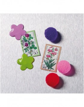 coloured magnets 6 flowers