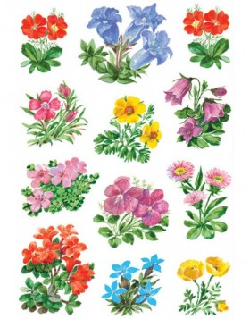 HERMA Decorative labels DECOR mountain flowers 3 sheets