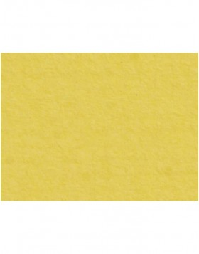 Mat made to measure - Giallo