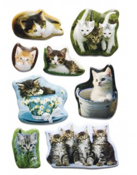 decorative labels Kittens - embossed