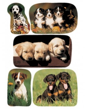decorative labels Puppies II - DECOR
