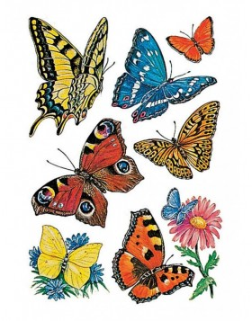 decorative labels Butterflies - DECOR