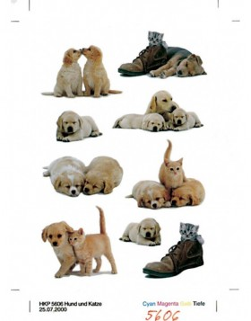 decorative labels Puppies - DECOR