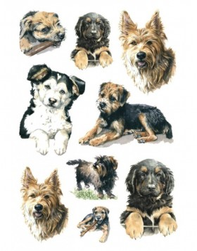 Stickers Dogs  DECOR, self adhesive