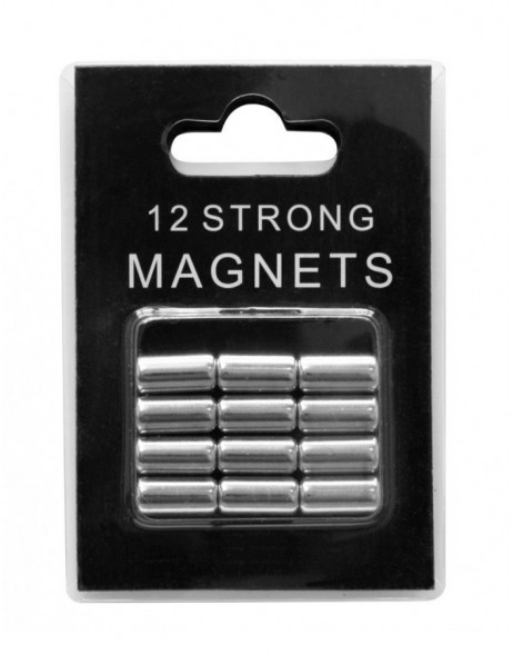 12 silberne Magnete in Blisterverpackung