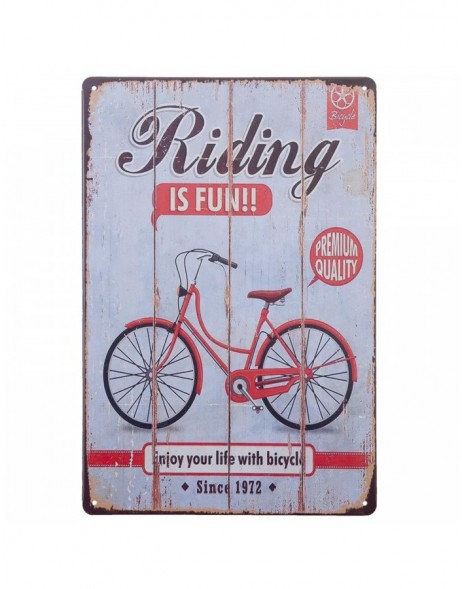 20x30 cm Blechschild RIDING