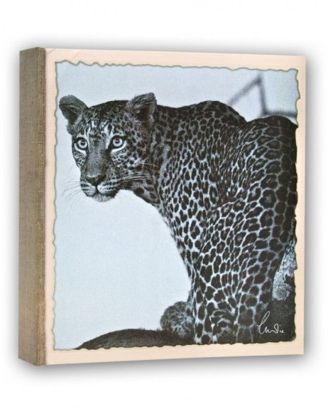 WILD LIFE slip-in album 200 photos 11x16 cm