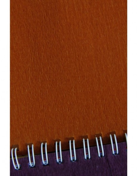 Rolle Krepppapier in cognac - 95172C Clairefontaine