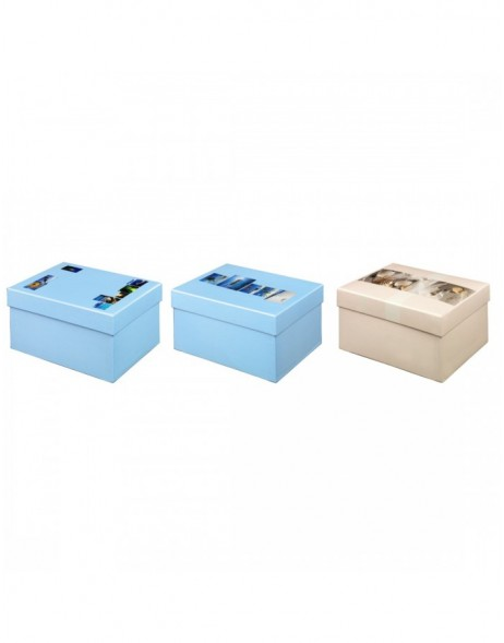 SUMMERTIME photo storage box