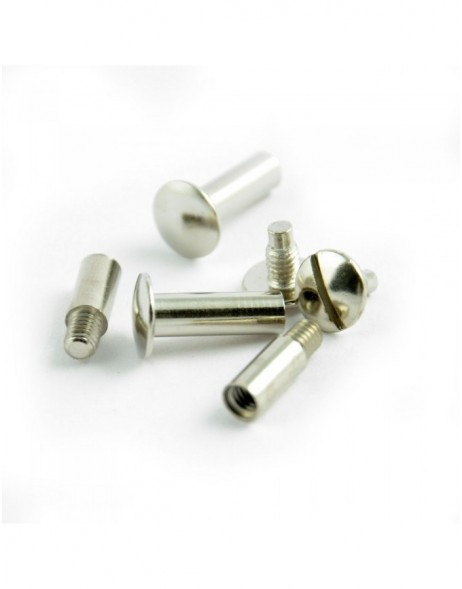 Screw set silver