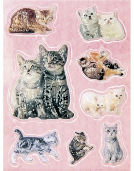 Decorative labels MAGIC cats Popup 1sh.