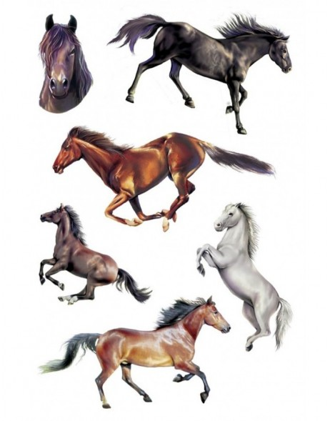 Tattoos Colour Art Horses 1 sheet