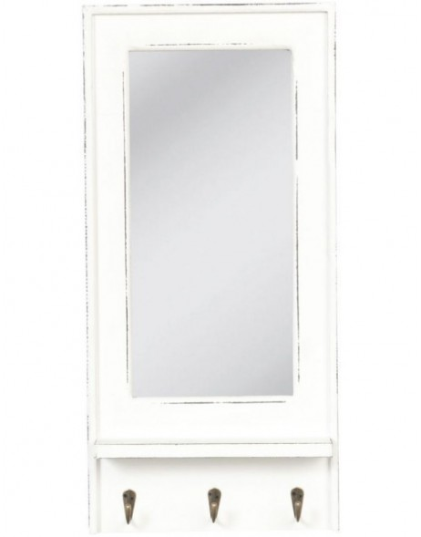 Wall mirror with wardrobe 28 x 59 cm