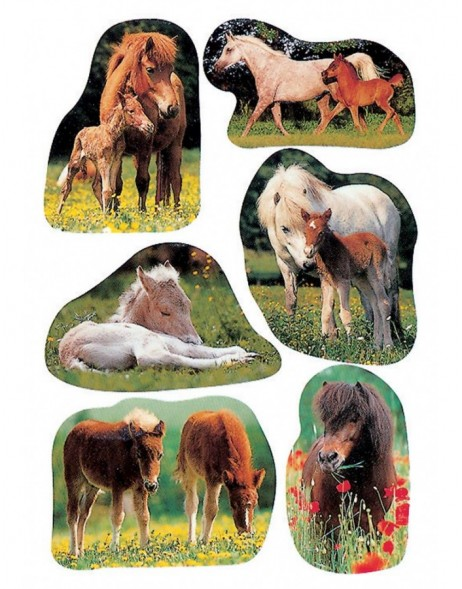 decorative labels Foals - DECOR