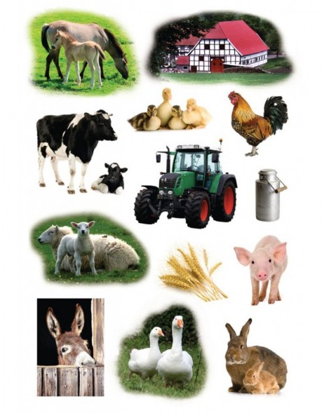 Sticker Farm Animals - DECOR