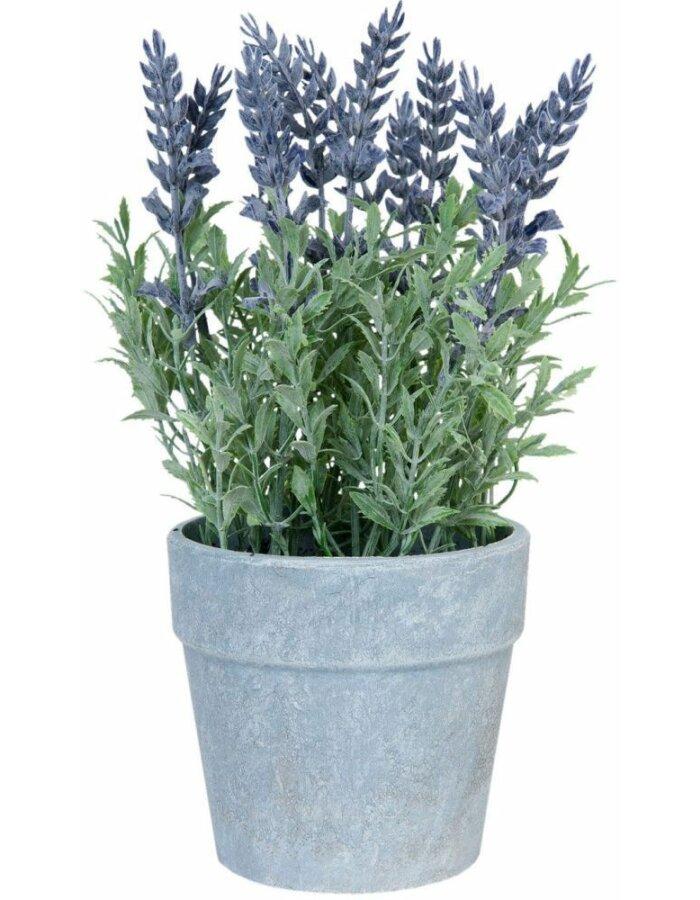 Lavendel-Topf - 6PL0187 10x25 cm von Clayre & Eef